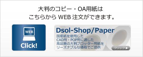 dsol-copy-oa-paper-Banner