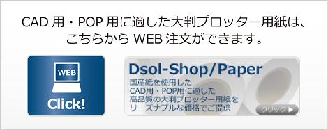 dsol-paper-Banner